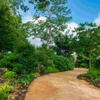 Deal Shade Garden HPU