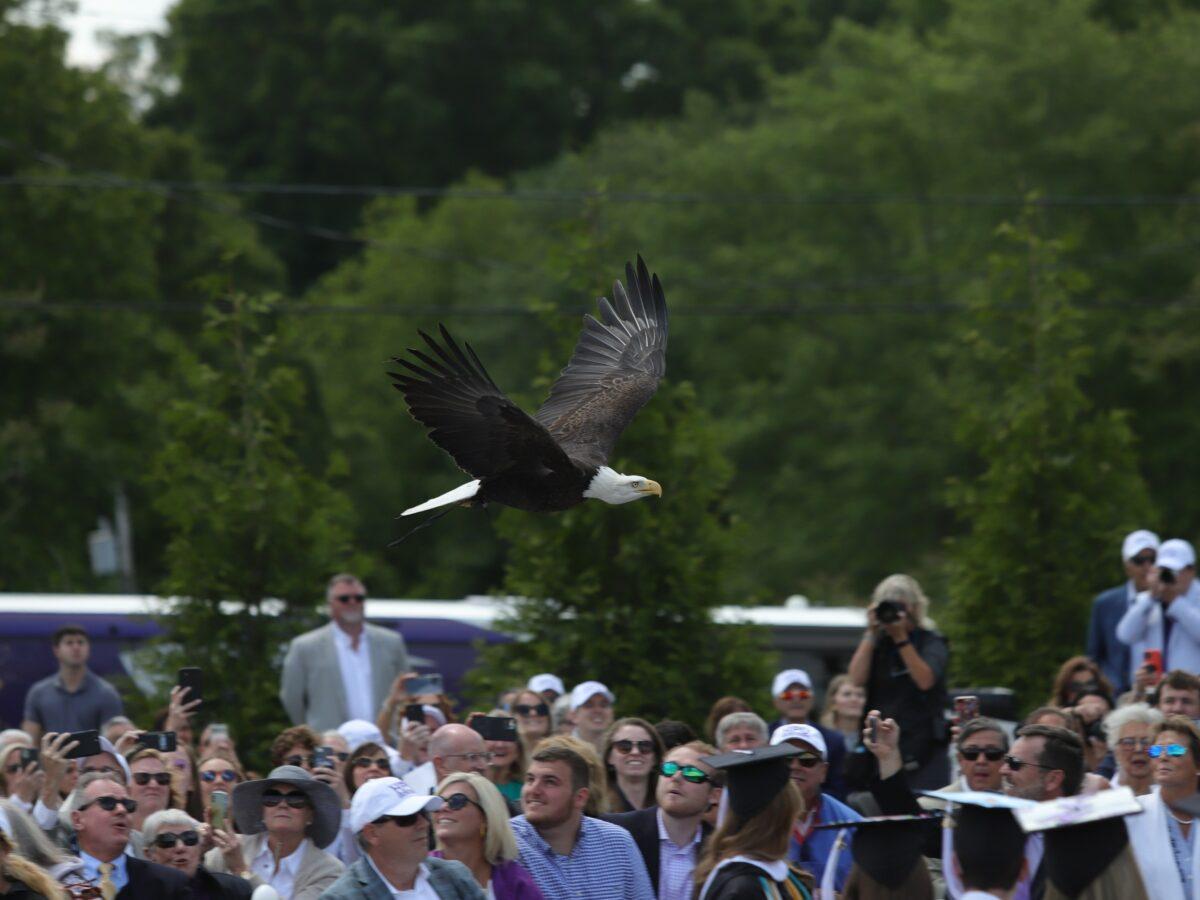 5 HPU Eagle Flies