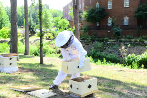 The photo features Elizabeth Pruitt tending to the bee apiary.
