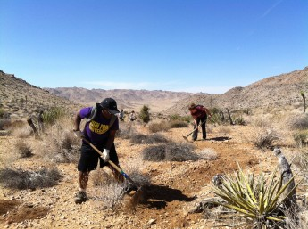 Students Help Restore National Park Over Spring Break