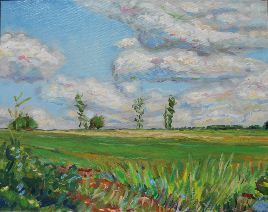 """""""Silk Hope Road Field,"""" by Bruce Shores"""