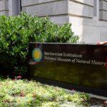 Elizabeth Reardon - Smithsonian new