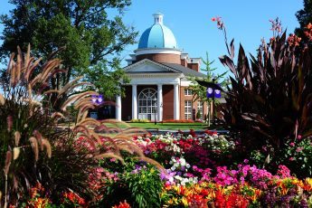 HPU Named Tree Campus USA 10 Years in a Row