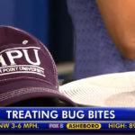 Fox 8 bug bites