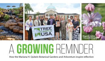 A Growing Reminder: How the Mariana H. Qubein Botanical Gardens and Arboretum Inspire Reflection