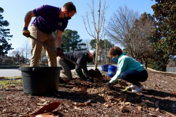 HPU Plants Community Trees in Honor of NC Arbor Day