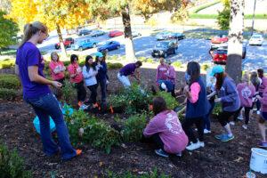 HPU Pink Ribbon Garden 1