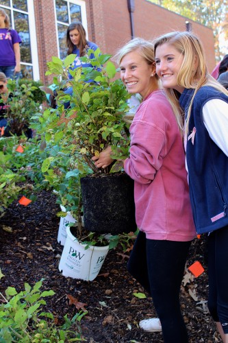 Students Plant Pink Ribbon Garden for Breast Cancer Awareness