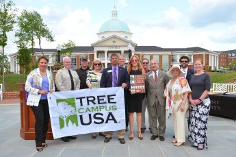 HPU Earns 9th Consecutive Tree Campus USA Recognition
