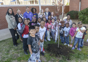 Second-grade students at Fairview Elementary School are featured with the tree that was planted at their school.