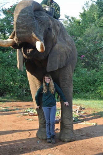 Finding the Big Five: HPU Students Research Exotic Animal Behavior in South Africa