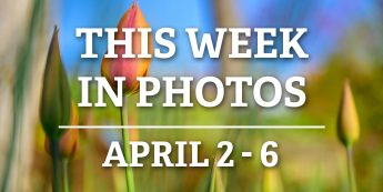 This Week in Photos: April 2-6