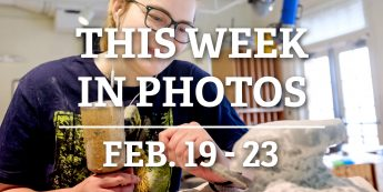 This Week in Photos: Feb. 19-23