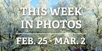 This Week in Photos: Feb. 25 – March 2