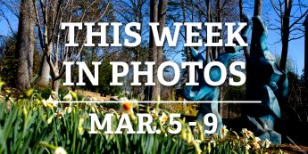 This Week in Photos: Mar. 5 – 9