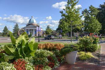 Fall Family Weekend Brings 5,000 Visitors