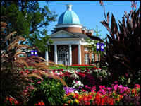 HPU Named 'Tree Campus USA' for Third Consecutive Year